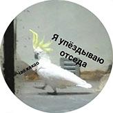 mem_28